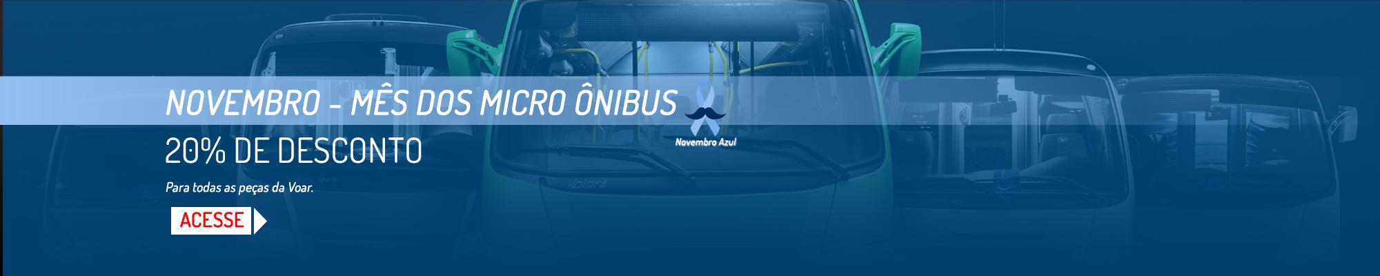Apollo Onibus